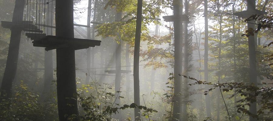 forellenhof_roessle_freizeitmöglichkeiten_kletterwald.jpg