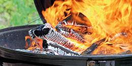 grill-feuer.jpg